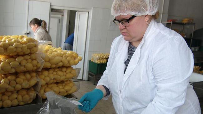 Челябинцы изучают опыт ярославского аутсорсинга